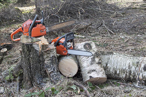 Tree-Services-Keller-TX-services-2chainsaw